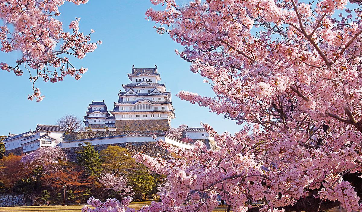 2020年の姫路城カレンダーを販売開始の画像
